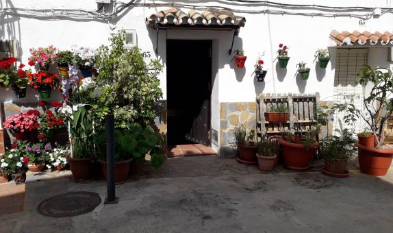 For long-term let: 1 bedroom house / villa in Casares